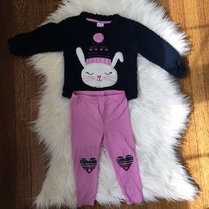 Other - Toddler Girl outfit 2T. Warm fuzzy top & leggings